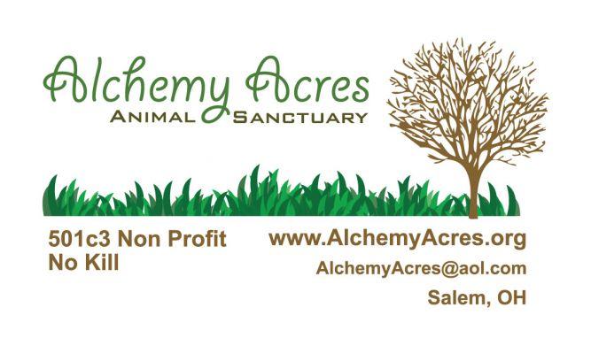 Alchemy Acres Animal Sanctuary