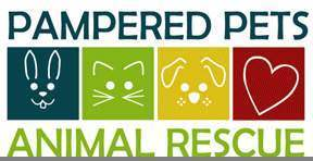 Pampered Pets Animal Rescue