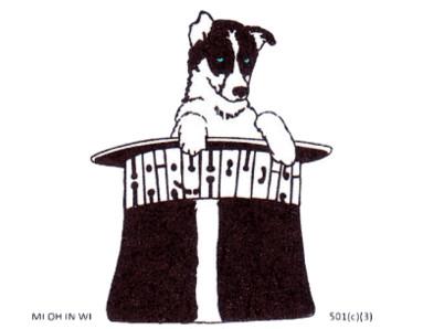 Hairy Houdini Siberian Husky Rescue