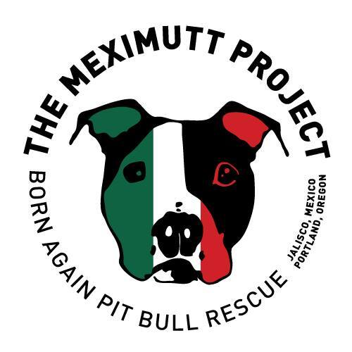 Born Again Pit Bull Rescue