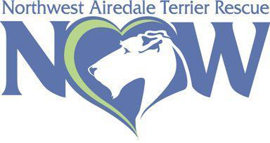 Northwest Airedale Terrier Rescue