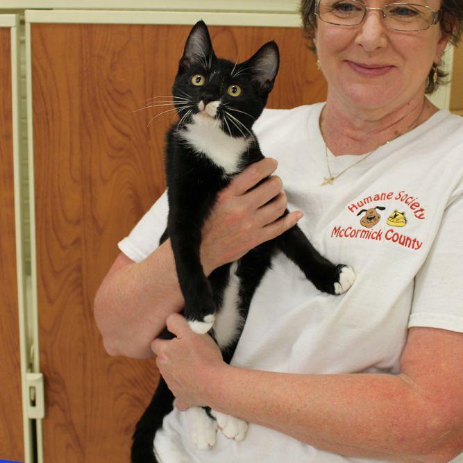Humane Society of McCormick County, Inc.