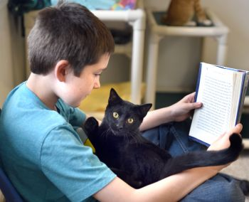 Ask about our reading program with the animals.