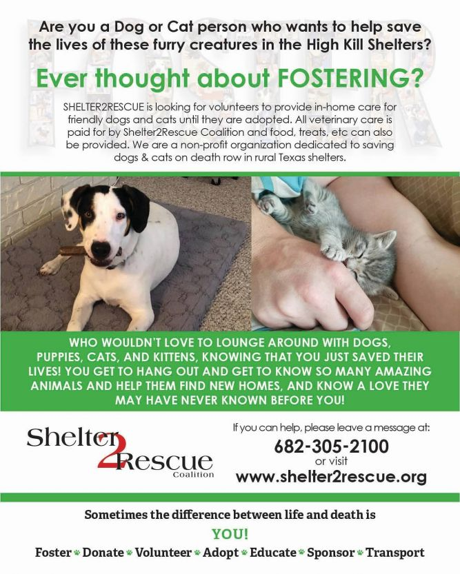 Shelter2Rescue Coalition