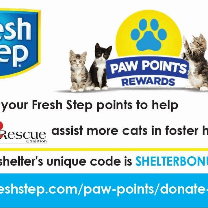 Donate points. We use alot of cat litter