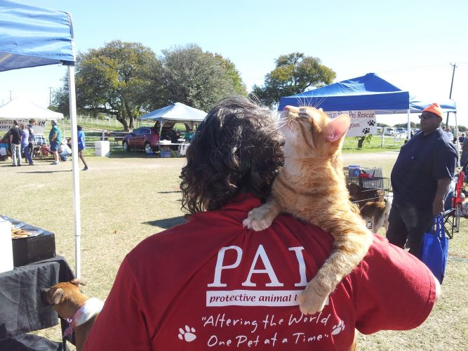 PAL - Protective Animal League