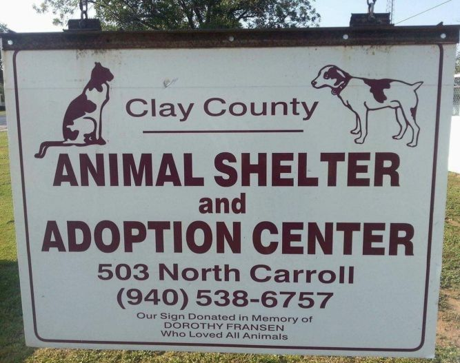 Clay County Animal Shelter, Inc.
