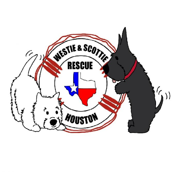 Westie and Scottie Rescue Houston
