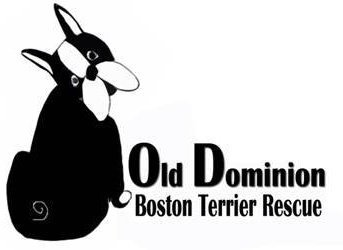 Old Dominion Boston Terrier Rescue
