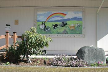 Rainbow Bridge memorial wall at Safe Haven