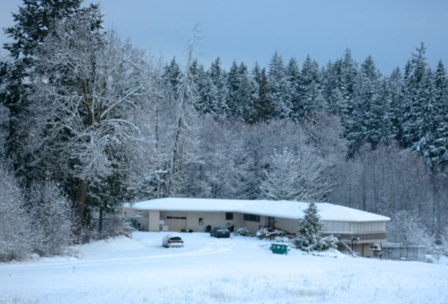 Safe Haven in winter