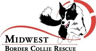 Midwest Border Collie Rescue