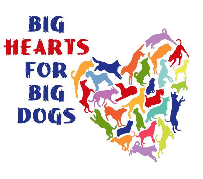 Big Hearts for Big Dogs Rescue- Miami