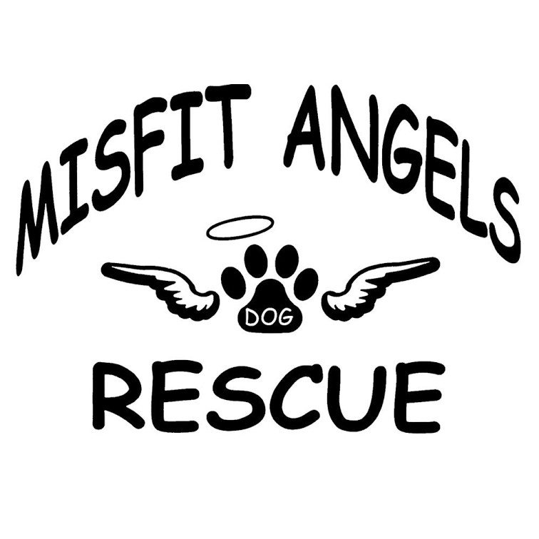 Misfit Angels Dog Rescue