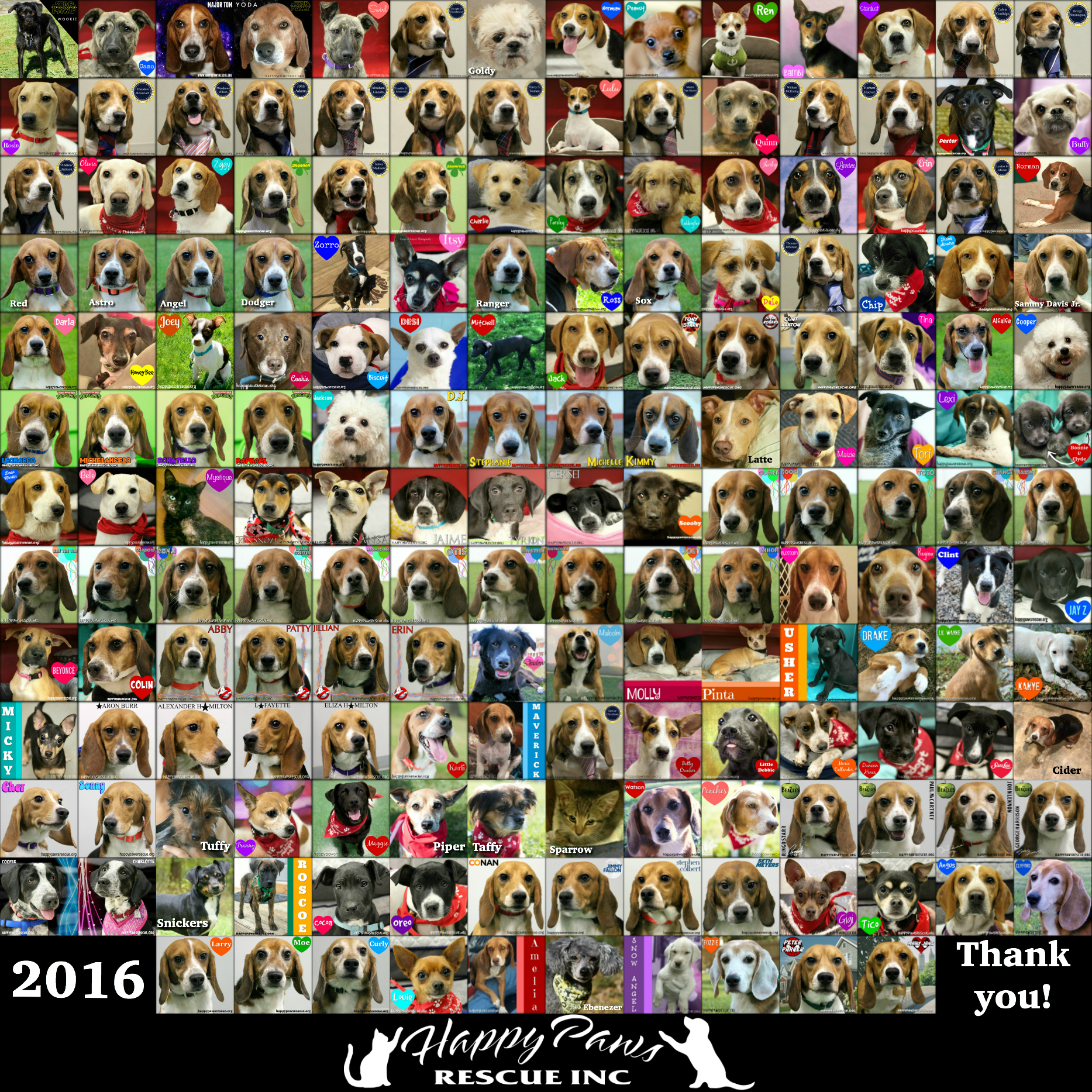 2016 Adoptions Collage