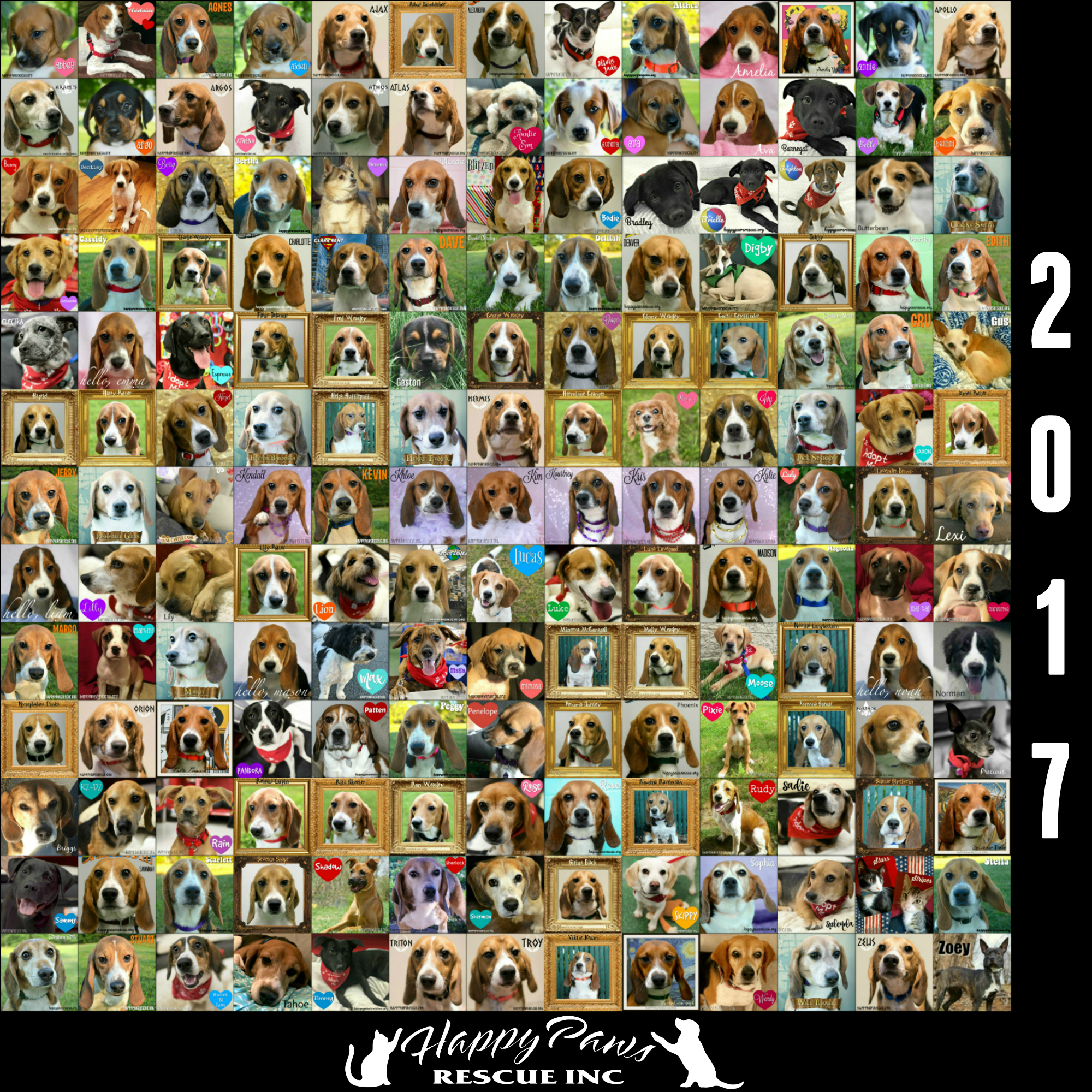 2017 Adoption Collage
