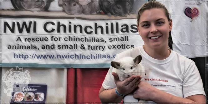 NWI Chinchilla Rescue