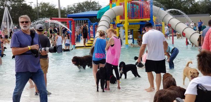 Having fun at the waterpark