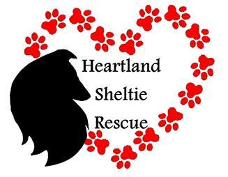 Heartland Sheltie Rescue