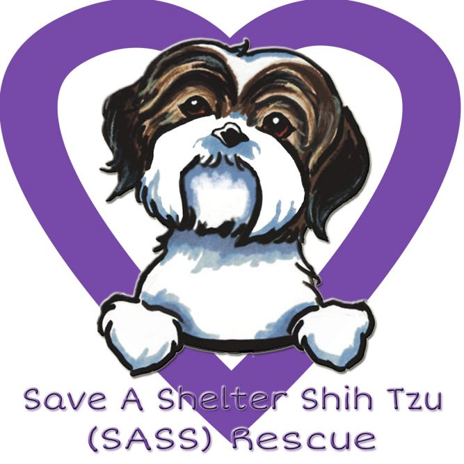 Save a Shelter Shih Tzu (S.A.S.S.) Rescue