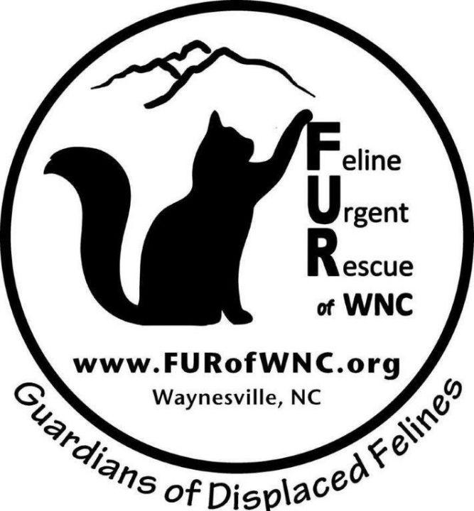 Feline Urgent Rescue of Western North Carolina