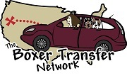 The Boxer Transfer Network