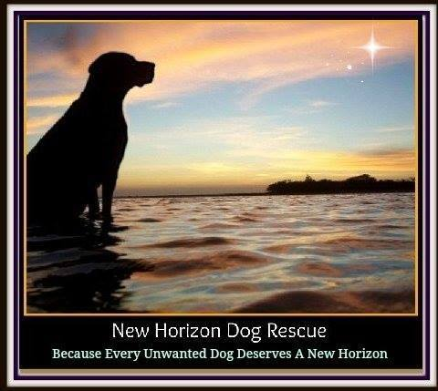 New Horizon Dog Rescue, Inc.