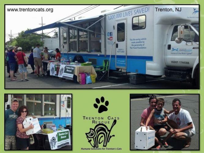 Trenton Cats Rescue