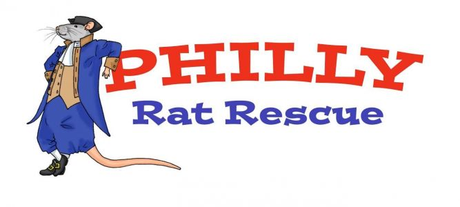 Philly Rat Rescue/SFRS