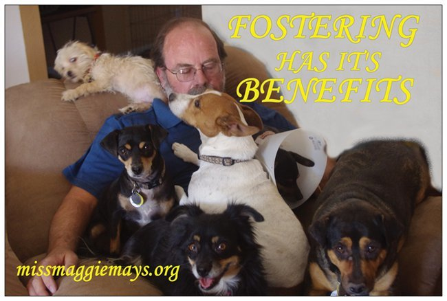Miss Maggie May's Rescue