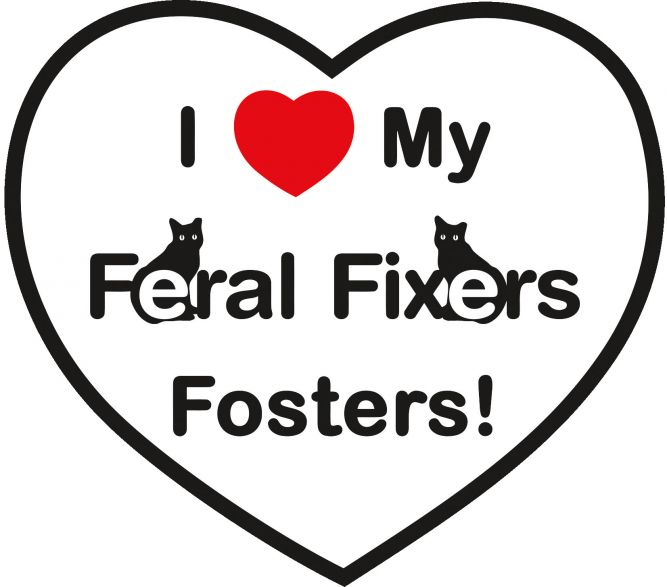 Feral Fixers, NFP