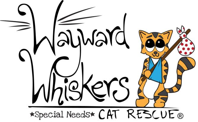 Wayward Whiskers Cat Rescue