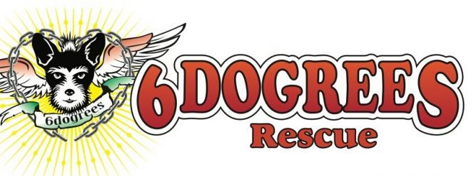 6Dogrees Rescue