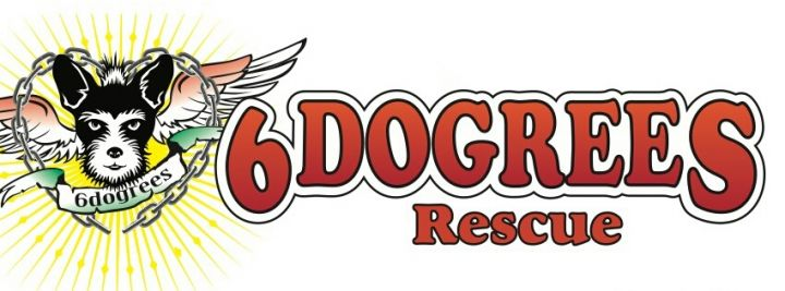 6dogrees Rescue banner