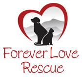 Forever Love Rescue Inc