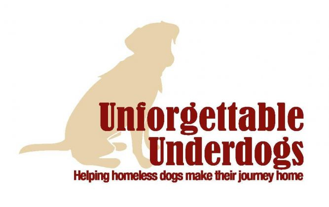 Unforgettable Underdogs Dog Rescue