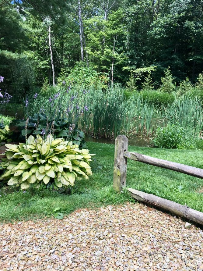 Willow Run Sanctuary & Adoptions, Inc..