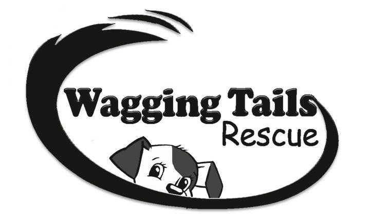 www.waggingtailsrescue.org