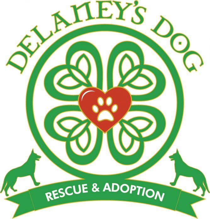 Delaney's Dog