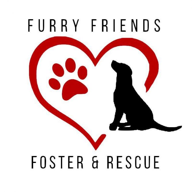 Furry Friends Foster and Rescue, Inc.