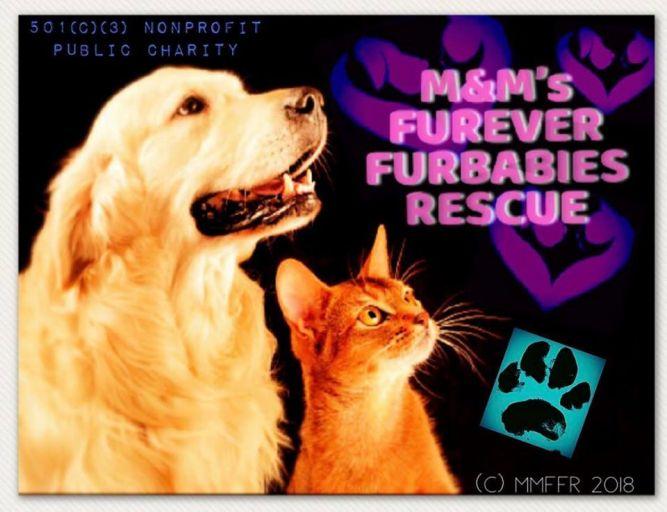 M&M's Fur-Ever Furbabies