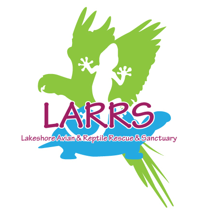LARRS - Lakeshore Avian and Reptile Rescue