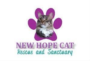 New Hope Cat Rescue & Sanctuary