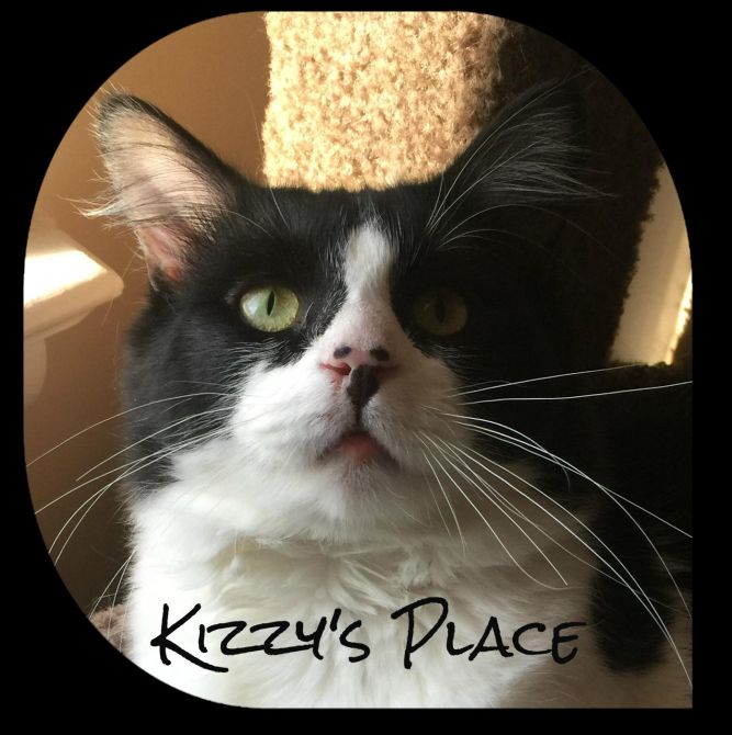 Kizzy's Place