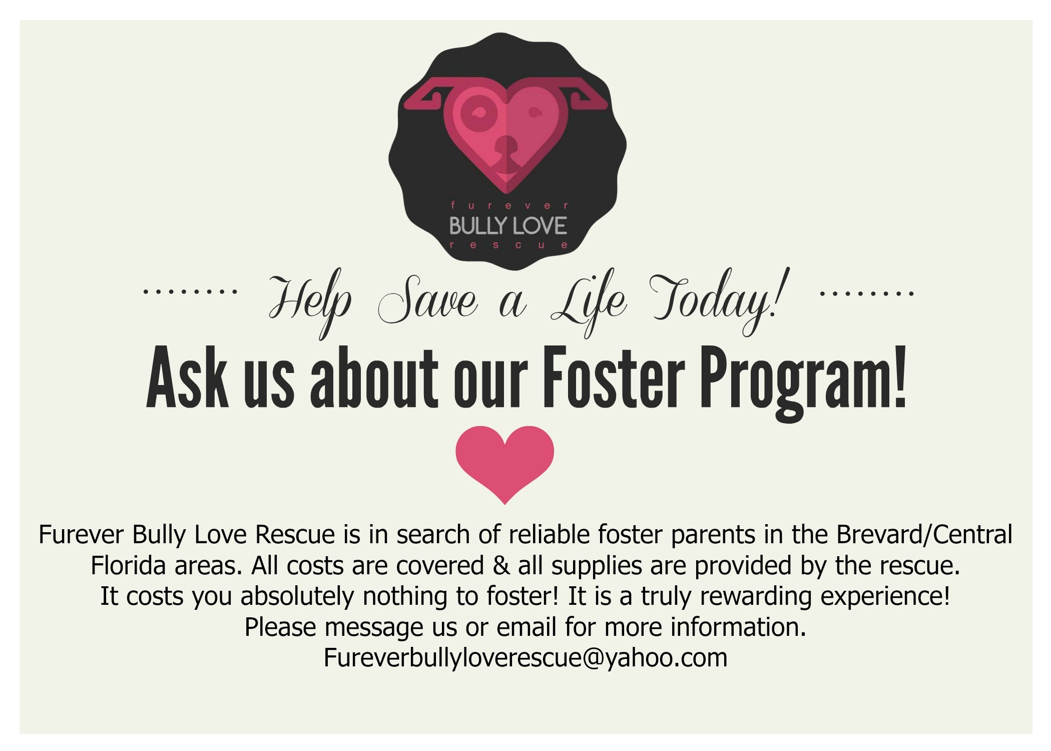 Ask us about our FOSTER PROGRAM!