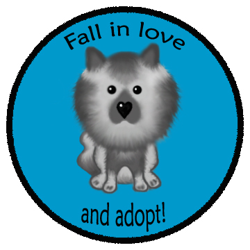 Fall in love, and adopt!