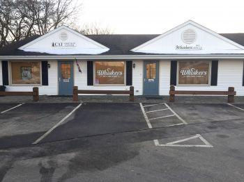Cat Adoption Center & Shelter