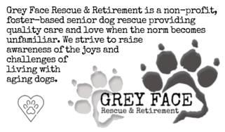 Grey Face Rescue and Retirement