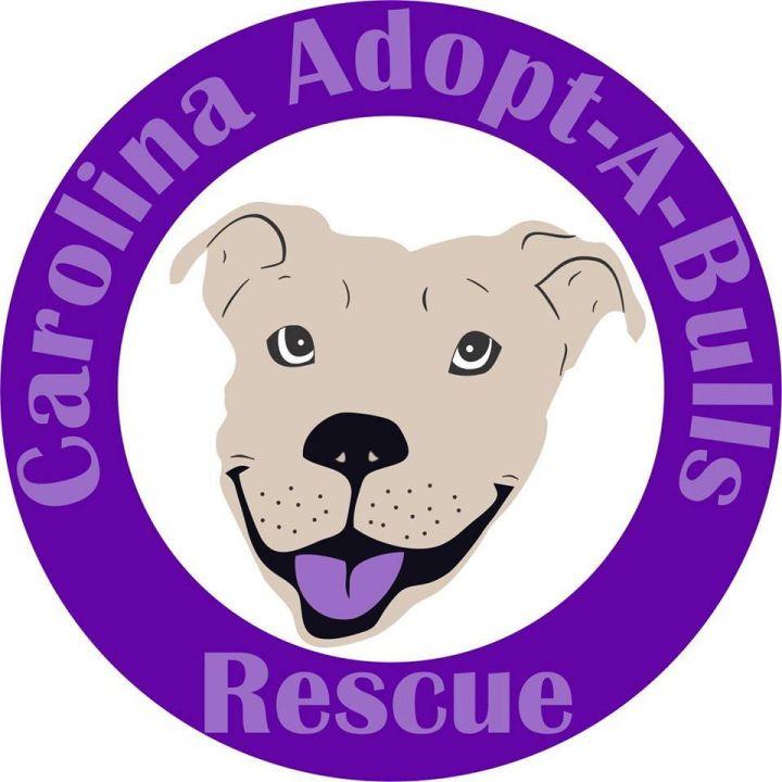 Carolina Adopt A Bulls Rescue