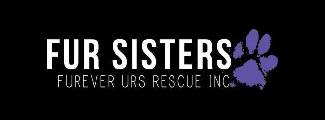 Fur Sisters - Furever Urs Rescue